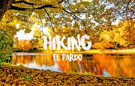 Hiking El Pardo